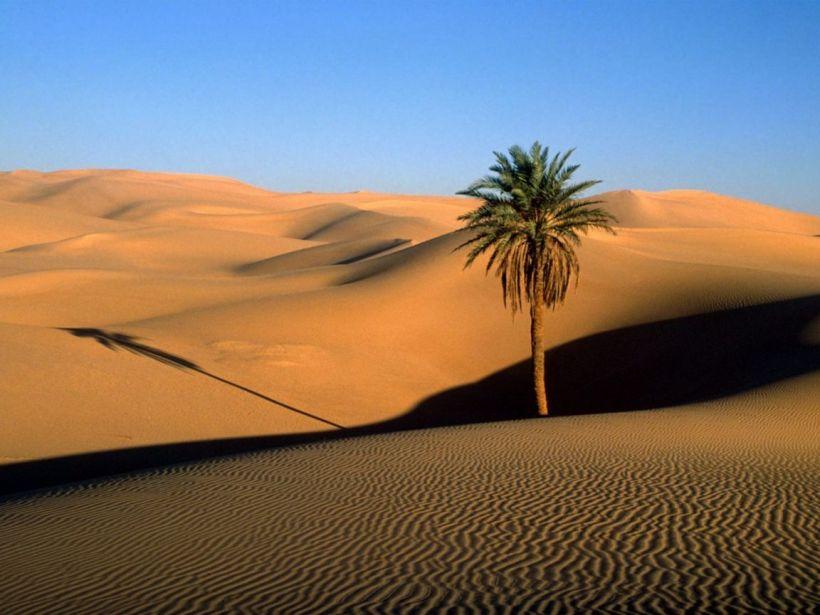 desert nile river valley